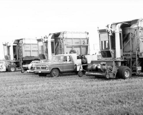 Zenon Park alfalfa harvesters