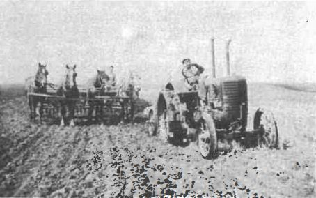 Horses and tractor